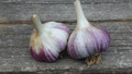Certified Organic Garlic Brown Rose