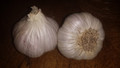 Turkish Red Garlic