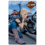 """H-D Finishing Touch 10.5"""" x 16.5"""" Sign"""