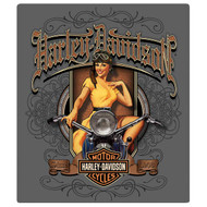 """H-D Old School Pin Up 13""""x 15"""" Sign"""