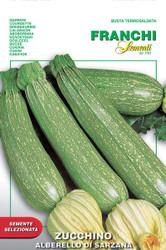 Zucchini Alberello of Sarzana (146-40)