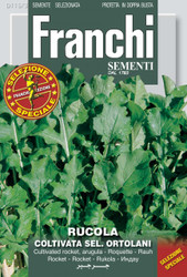 Arugula Ortolani, Market Grower (115-3)