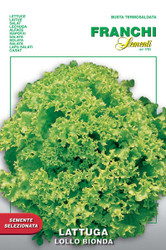 Lettuce Lollo Bionda (78-23)