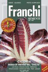 Radicchio Rossa Treviso sel Svelta (40-53ME)