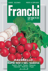 Radish Rapid Red Sanova (112-29)