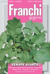 White Mustard/Senape Bianca (3006-1)