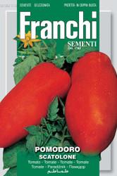 Tomato Scatolone (106-116)