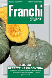 Winter Squash Berrettina Piacentina (145-7)