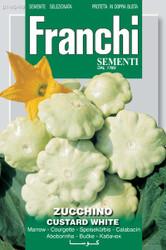 Zucchini Custard White (146-49)