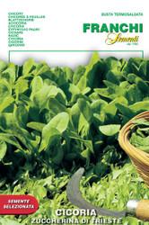 Chicory Zuccherina di Trieste (40-18)