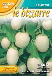 Eggplant Pianta Delle Uova (343-10)