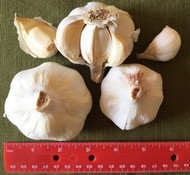 A unit is approximately a half-pound or three bulbs.