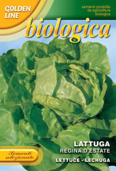 Lettuce Regina d'Estate - Summmer Queen - Certified Organic (79-15B)