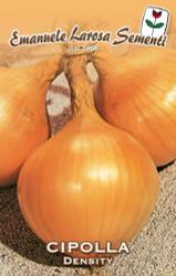 Onion Density/Dorata di Parma -  Certified Organic (43-4B)