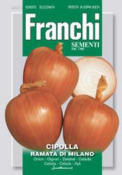 Onion Ramata di Milano (43-3)