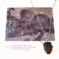 YOU are Sooo Young - Genuine Triceratops Tooth Fossil Necklace