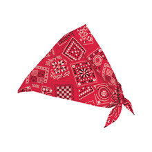 Red Paisley Doll Bandana