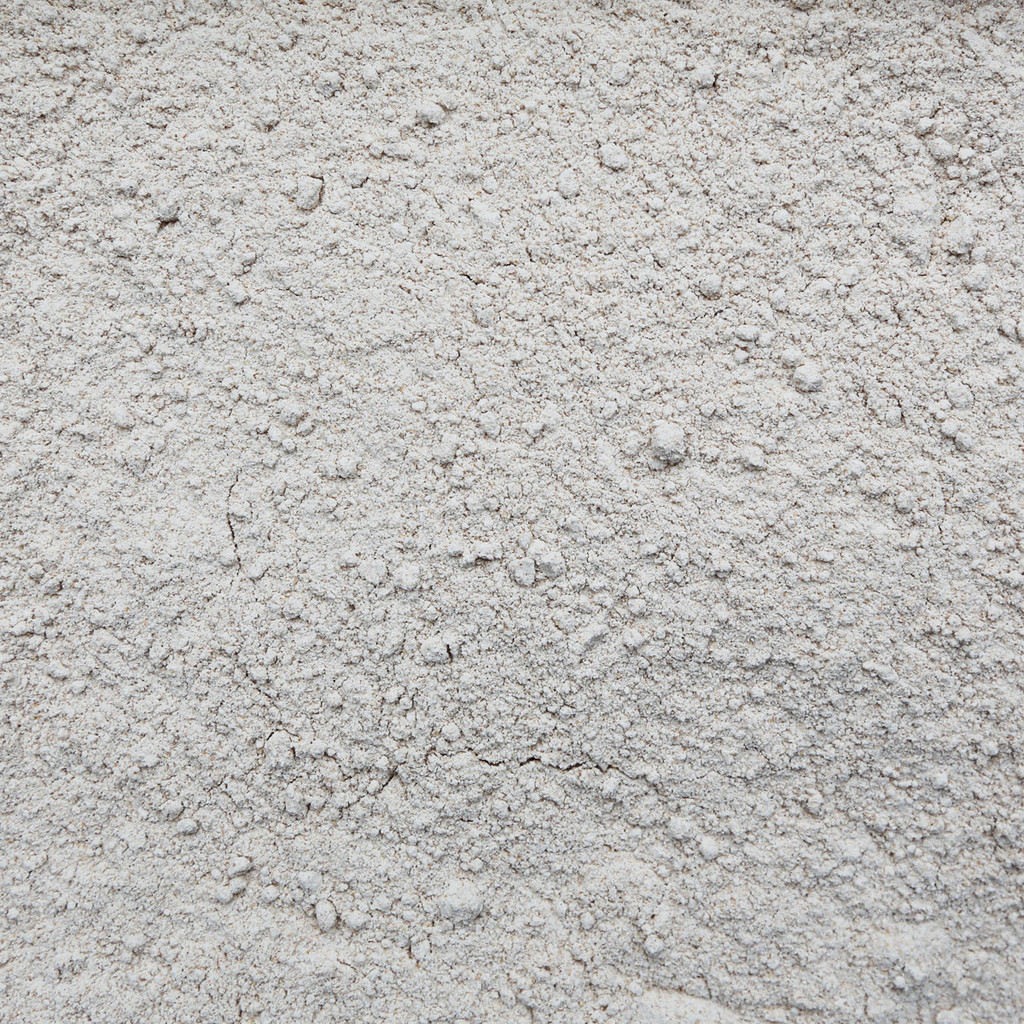 ORGANIC RED FIFE WHEAT, flour (Treasure Life Farms)