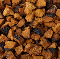 CHAGA MUSHROOM, wild harvested, chunks or pieces