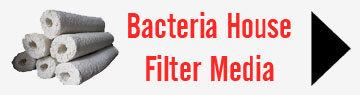 Bacteria House Media