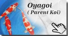Oyagoi