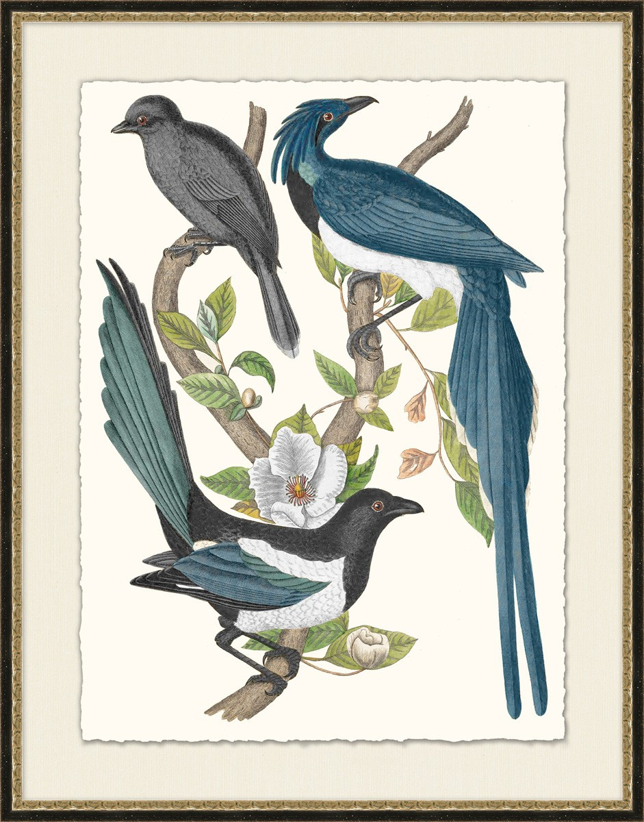 Blue Birds | Laura Ramsey Furniture U0026 Interiors ...
