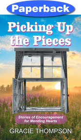 Cover of Picking Up the Pieces
