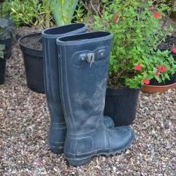 jane-wellies.jpg