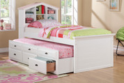 The Annie doll storage trundle bed