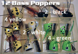 bassmags12labeled.jpg