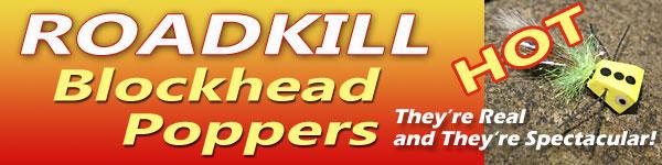 roadkillspec1.jpg