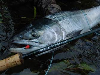 Maxxon Gorge Fly Rod