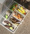 FlyBass Big Trout/Bass Hopper Assortment