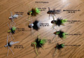 FlyBass-Pultz Ten Fly Assortment