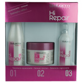 Salerm Hi Repair Treatment Kit