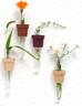Cute pot vases to brighten up your indoor space.