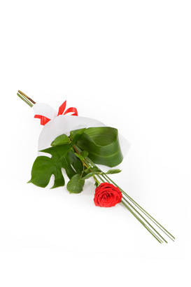 Single red rose for delivery in rome, naples or any Italian City.