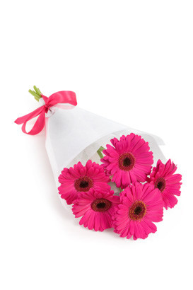 Hot pink gerberas delivered by local florists in Italy.