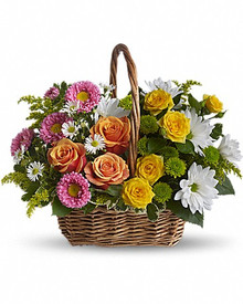 Mixed spring flower basket for delivery in Italy.