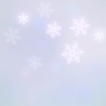Pastel Snowflake Photography Backdrop