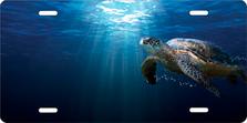Salty Bones Sea Turtle Offset Auto Plate sku T2437SB