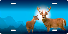 Deer on Blue Auto Plate sku T2224B
