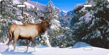 Snow Elk Auto Plate sku T2227F