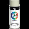 10OZ Almond Touch 'N Tone Spray Paint