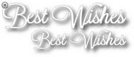 Tutti Designs Word Set - Best Wishes Die (Tutti-247)