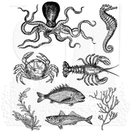 Tim Holtz Cling Rubber Stamp Sealife (CMS304)