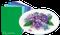 LeCrea Design Flower Foam Sheet Set - Blue/Violet 1
