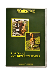 Golden Retriever Training DVD - Stringer