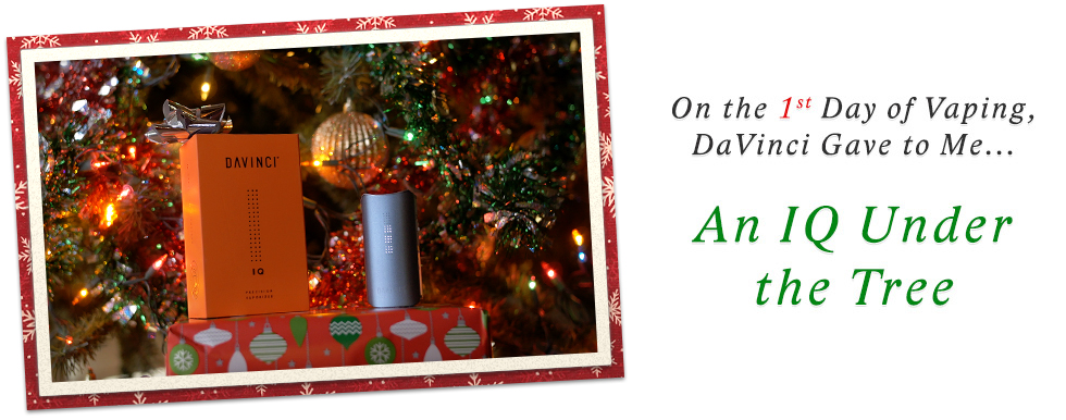 Day 1 of 12 Days of DaVinci Christmas