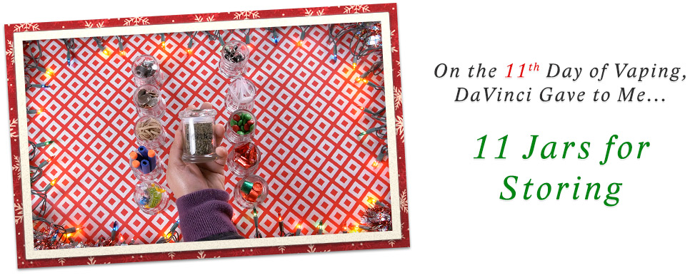 Day 11 of 12 Days of DaVinci Christmas